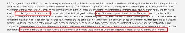 Основні положення та умови використання Netflix