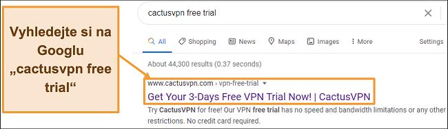 Screenshot ukazující, jak najít bezplatnou zkušební verzi CactusVPN na Googlu