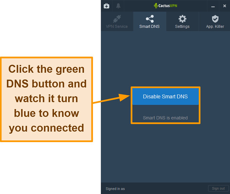 Screenshot of CactusVPN interface showing how to enable the smart DNS