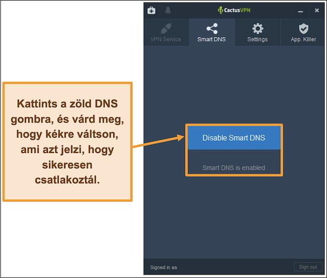 Pillanatkép a CactusVPN felületről, amely bemutatja az intelligens DNS engedélyezésének módját