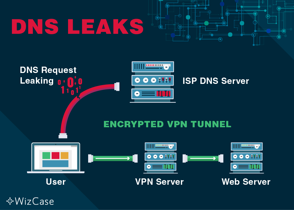 Screenshot of DNS request leaking
