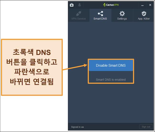 스마트 DNS를 활성화하는 방법을 보여주는 CactusVPN 인터페이스 스크린 샷