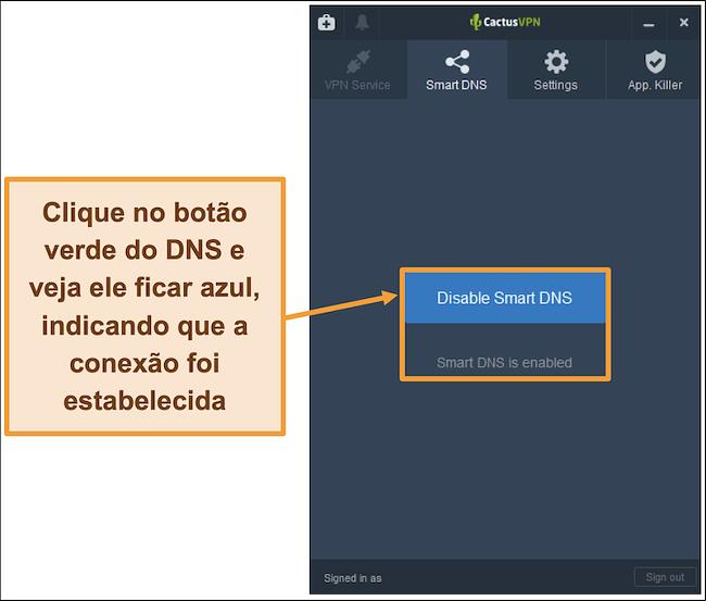Captura de tela da interface CactusVPN mostrando como habilitar o DNS inteligente