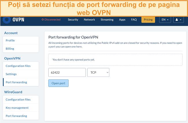 Captură de ecran a opțiunii de redirecționare a porturilor pe OVPN