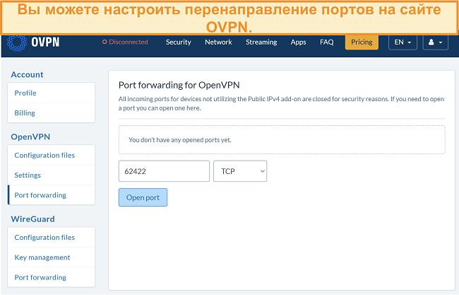 Скриншот опции переадресации портов на OVPN