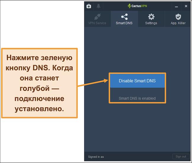 Снимок экрана интерфейса CactusVPN, показывающий, как включить интеллектуальный DNS