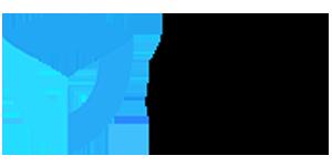 Screenshot of IvacyVPN logo