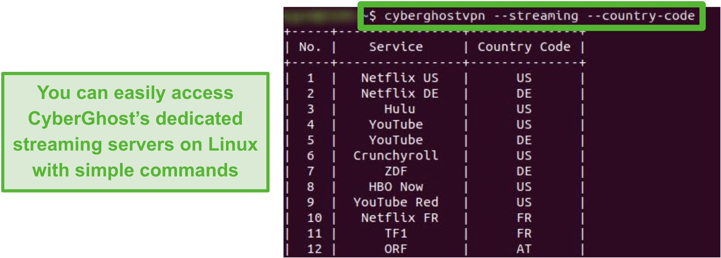 Screenshot of CyberGhost's dedicated streaming servers on Linux.