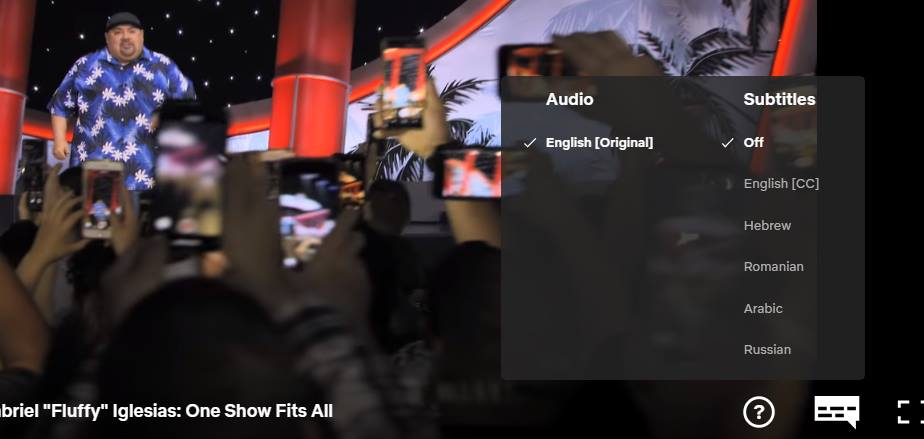 Netflix Audio and Subtitles Language menu in English