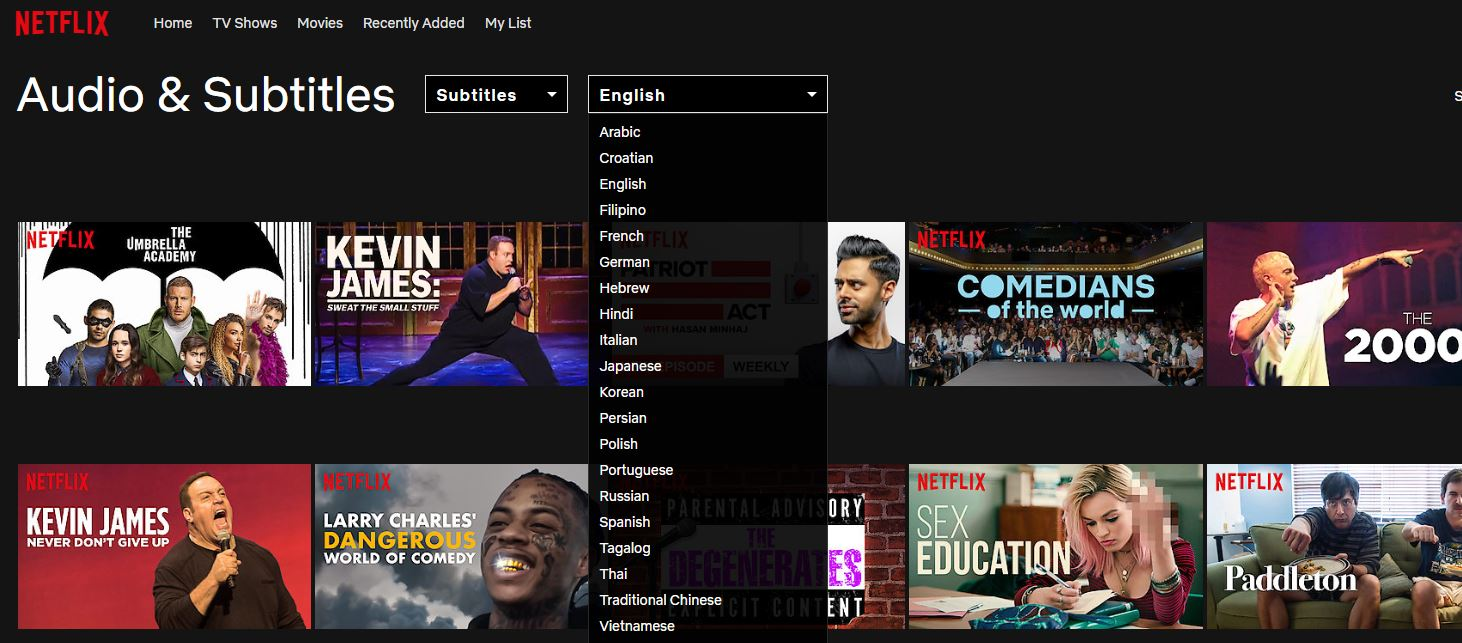 Netflix-Suchseite mit Untertiteln und Audiofilter