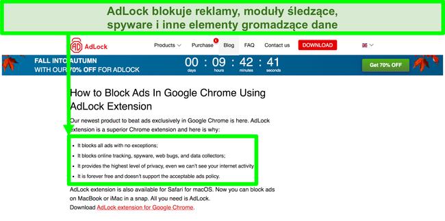 """Zrzut ekranu witryny AdLock z informacją, że nie ma zasad """"dopuszczalnych reklam"""""""