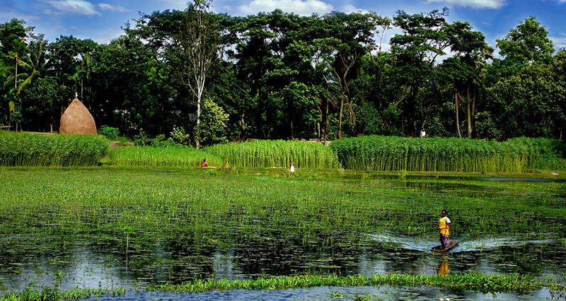 Bangladesh best vpns