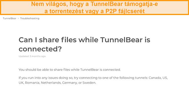Pillanatkép a TunnelBear hibaelhárító oldaláról a fájlmegosztásról