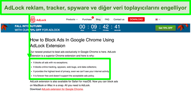 AdLock web sitesinin