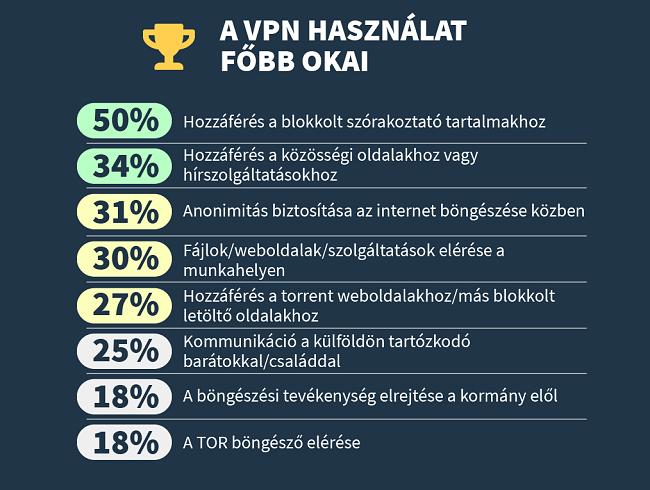 infographic a legfontosabb okok miatt, amelyek miatt az emberek használják a vpn-t