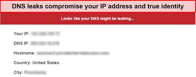 Screenshot of a DNS leak test reporting a leak