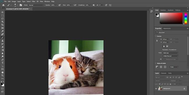 Komplett version av Photoshop