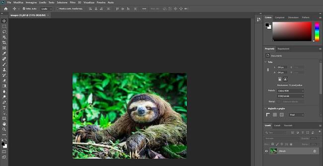 Versión completa de Photoshop