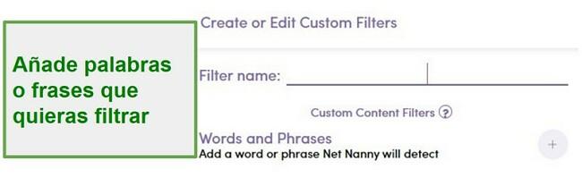 Filtro personalizado Net Nanny