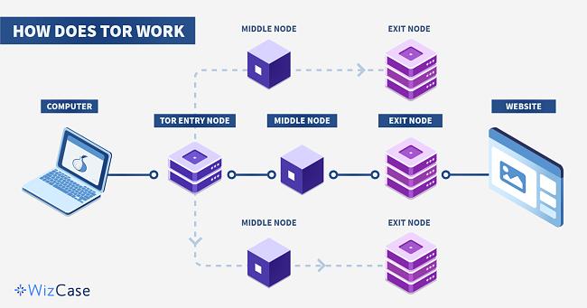 Инфографика за това как работи Tor