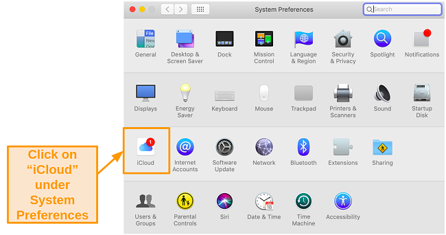 creenshot of System Preferences on Mac with Mojave.