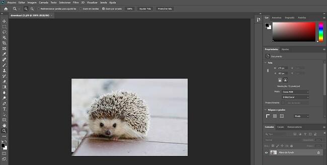 Versão completa do Photoshop