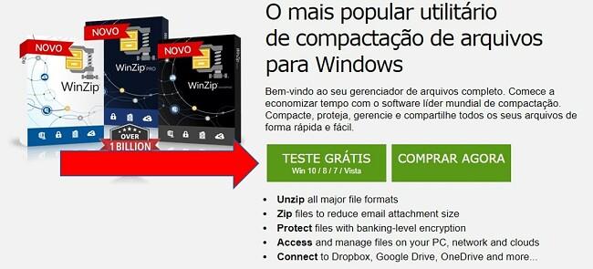 Página de download do WinZip
