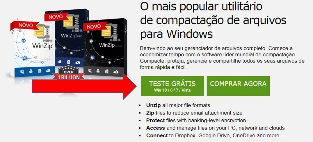 Página de download do WinZip