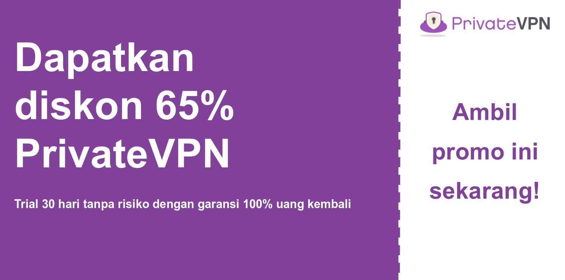grafik banner kupon utama PrivateVPN yang menunjukkan diskon 65%