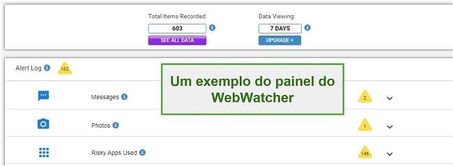 Captura de tela do painel do Webwatcher