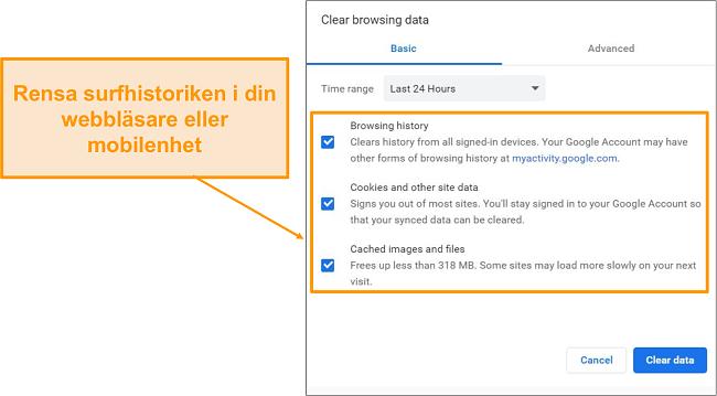 Skärmdump av cache och webbhistorik.