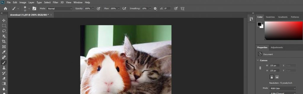 captura de pantalla del panel de Adobe Photoshop