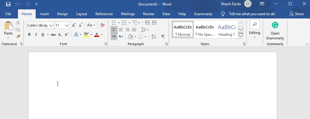 captura de pantalla del panel de trabajo de MS Word