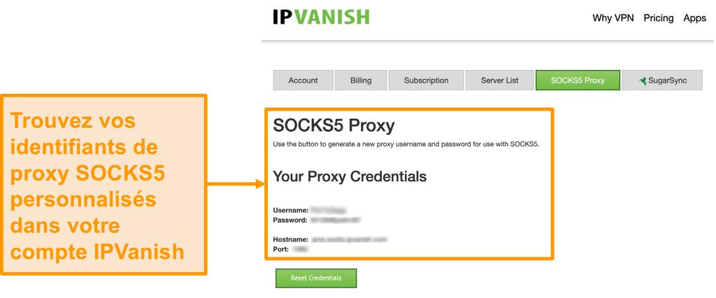 Capture d'écran des informations d'identification gratuites du serveur proxy SOCKS5 d'IPVanish sur le site Web