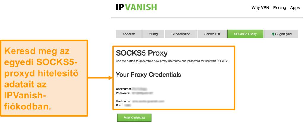 Képernyőkép az IPVanish ingyenes SOCKS5 proxy szerverhitelesítő adatairól a webhelyen