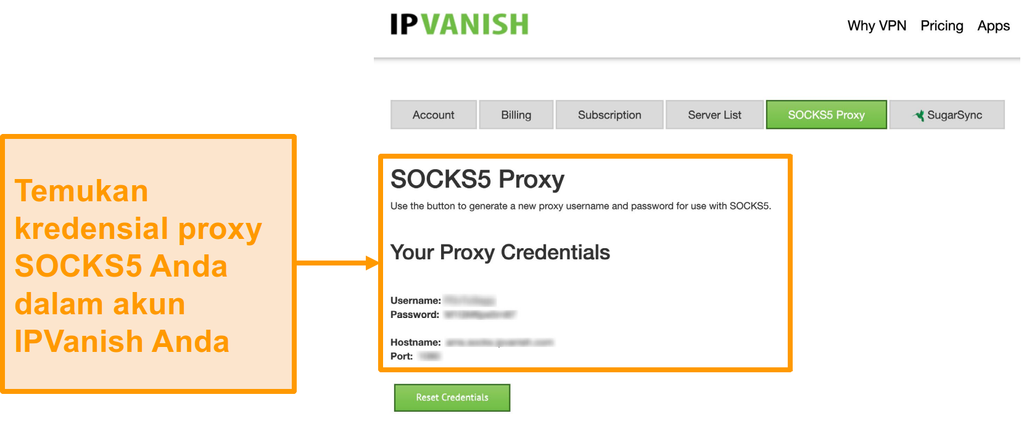 Screenshot dari IPVanish gratis SOCKS5 proxy server mandat di situs web
