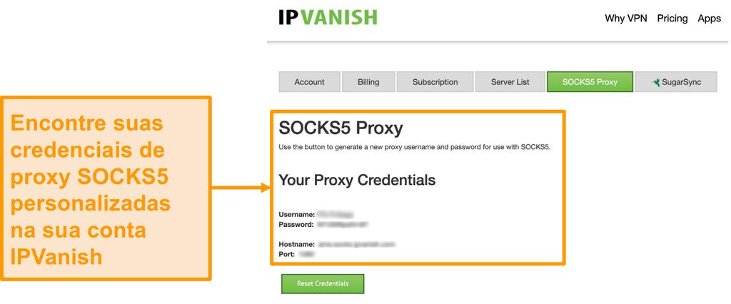 Captura de tela das credenciais gratuitas de servidor proxy SOCKS5 da IPVanish no site