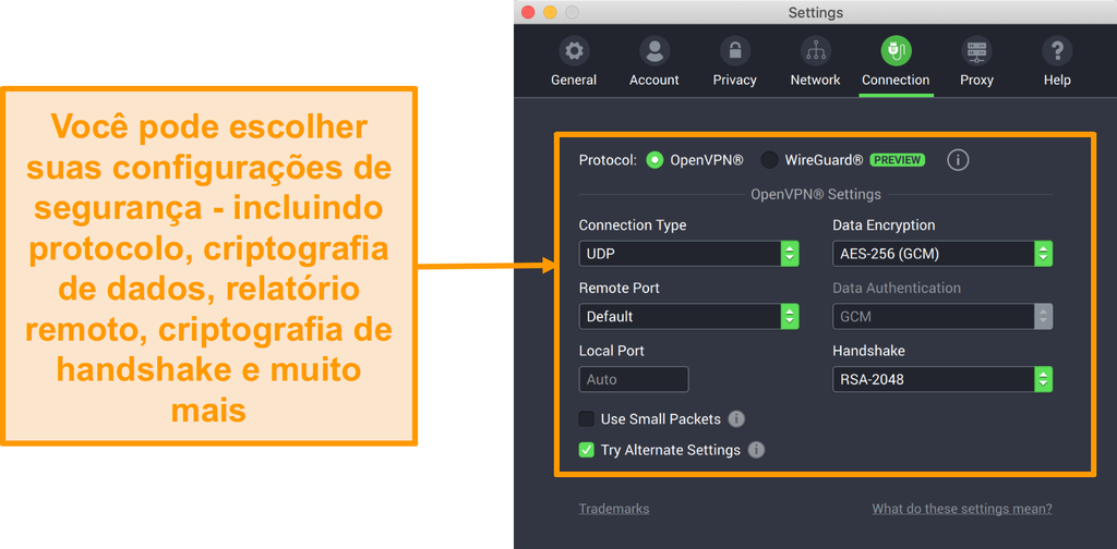 Captura de tela da VPN de acesso à Internet privada e seu aplicativo para Mac, exibindo as opções de personalização da guia Conexão
