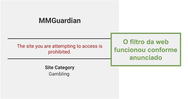 Captura de tela do filtro da web que funcionou conforme anunciado
