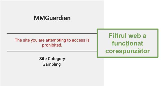 Captură de ecran a filtrului web care a funcționat așa cum este publicat