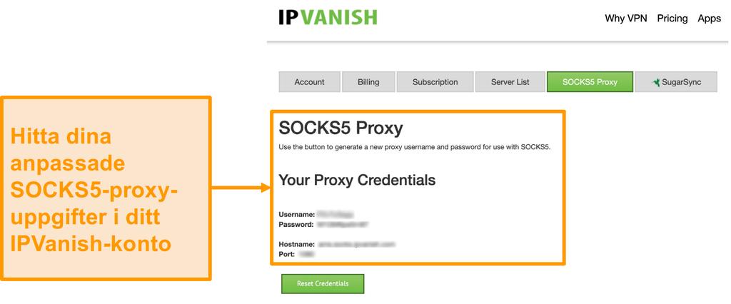 Skärmdump av IPVanishs gratis SOCKS5-proxyserveruppgifter på webbplatsen