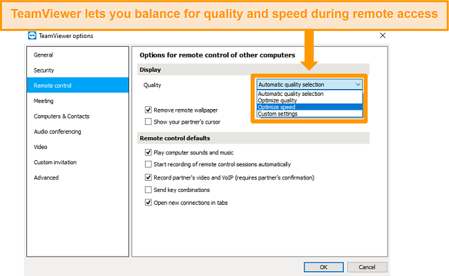 Screenshot of TeamViewer's remote access options, and