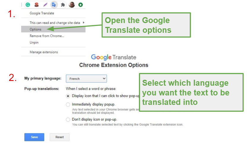 Choose your primary language for Google Translate