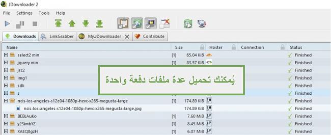 لقطة شاشة لميزة التنزيلات المتعددة لـ JDownloader