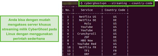 Tangkapan layar dari server streaming khusus CyberGhost di Linux.