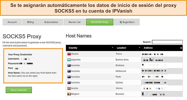 Captura de pantalla de las credenciales de inicio de sesión de proxy asignadas a mi cuenta de IPVanish