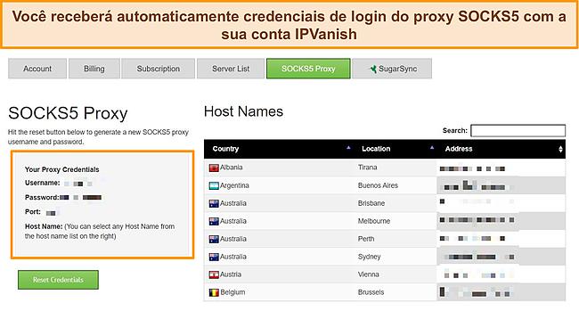 Captura de tela das credenciais de login do proxy atribuídas à minha conta IPVanish