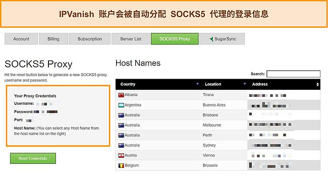分配给我的 IPVanish 帐户的代理登录凭据的屏幕截图
